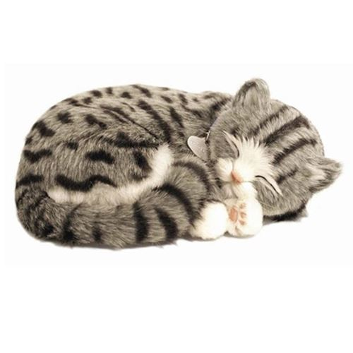 Picture of Precious Petzzz - Tommy the Tabby Cat