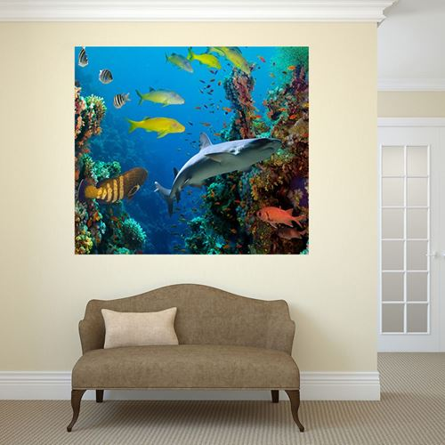 Picture of Through the Window Wall Mural - Sea Life