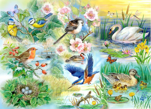 Activities to Share - 250 Large Piece Puzzle Feathered Friends