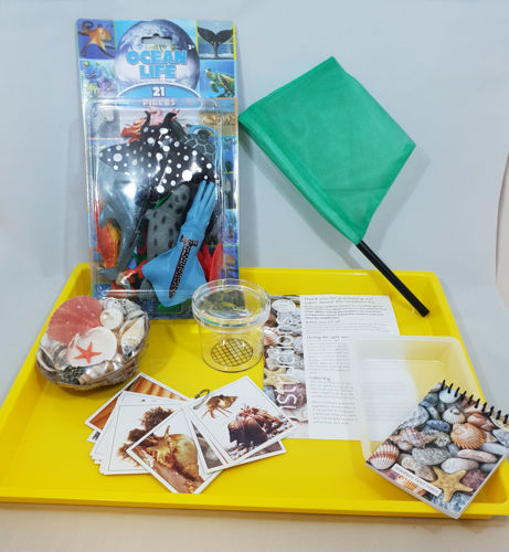 Picture of Hobby Bundle - Explore the Rockpools