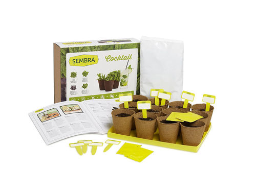 Picture of Adult Cocktail Herb Kit (Makes 12)