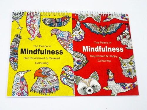 Activities to Share - Mindfulness Colouring Books Set of 2