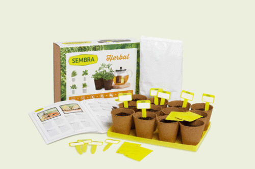 Aromatic Herbs Growing Kit, boxed kit showing herb images with contents assembled and guide with yellow labels, Contains:   4 seed envelopes: Thyme; Chamomile; Anise and Stevia 12 round biodegradable pots to plant seeds Substrate Labels Illustrated step-by-step guide Tray Size: box: (l) 34cm x (w) 25.5cm x (d) 9.5cm.