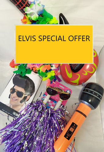 Elvis Special Offer - buy Elvis Live Download Concert and Elvis Singalong Pack and get 5% discount. Image shows Singalong Pack items.