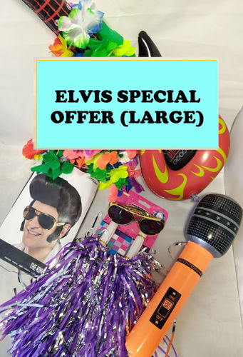 Elvis Special Offer - large, buy Elvis Live Download Concert and Elvis Singalong Fun Pack together and get discounted price